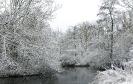 Winter wonderland 2017_6