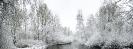 Winter wonderland 2017_8