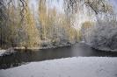 Winter wonderland_8